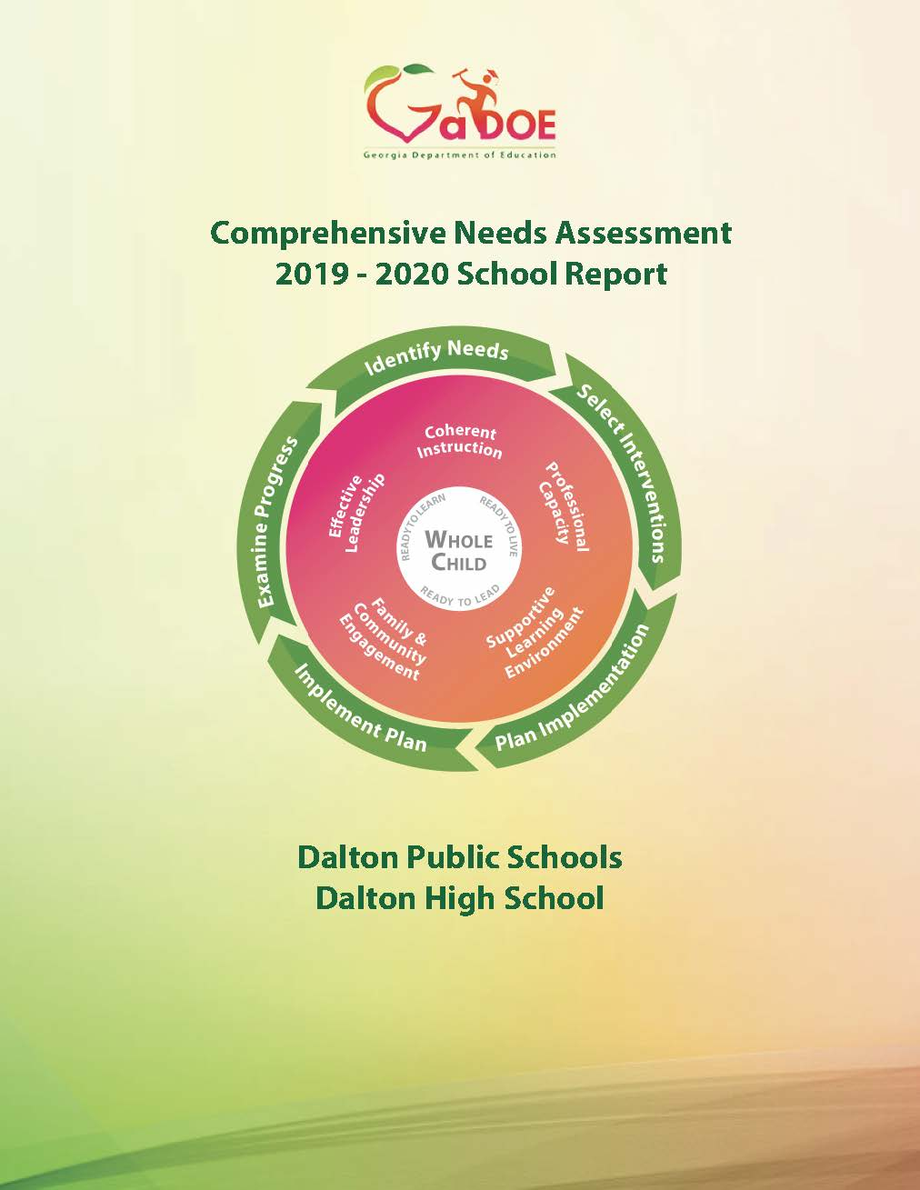 Consolidated Needs Assessment graphic